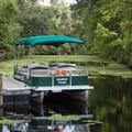 Pontoon wildlife boat tours are offered inside the park.- Lake Griffin State Park