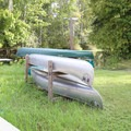 Canoe rentals are available at the park.- Lake Griffin State Park