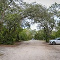 Lake Griffin State Park Campground sits along with lazy dirt road.- Lake Griffin State Park Campground