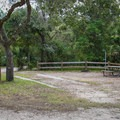 Several sites are pull-through sites.- Lake Griffin State Park Campground