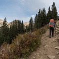 Ascend through a wooded area on the first mile of the hike.- Neva Backcountry Zone