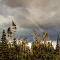 After the storm.- Neva Backcountry Zone