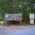Little River Springs Park is a beautiful spot lying in an unpopulated area, keeping the crowds down a little bit.- Little River Springs Park
