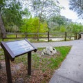 A few interpretive signs dot the walking paths around the springs.- Little River Springs Park