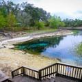 Little River Springs.- Little River Springs Park