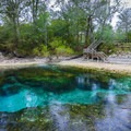 The emerald blue water emerges at 72 degrees from the limestone formations beneath its surface.- Little River Springs Park