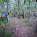 A short nature trail heads into the trees from the parking area.- Little River Springs Park