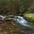 Conasauga river rapids.- Conasauga River Trail