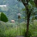 the farm has beautiful views of the valley below- Mundo Nuevo to Pozo Azul to Minca Loop