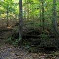 Over a bridge and through the woods.- Laurel Ridge Trail