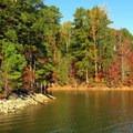 Ripples in Lake Lanier.- Laurel Ridge Trail