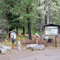 The trailhead for Benson Trail is located near the Scott Lake Campground. - Scott Lake Campground