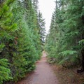 Trail leading to the walk-in sites at Scott Lake Campground. - Scott Lake Campground