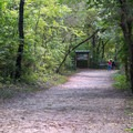 This wide path leads to numerous trails.- French Canyon