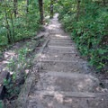 Take the staircase for an overhead view of the canyon.  - French Canyon