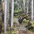The trail is fairly wide and winds back and forth upward. - Garabaldi Lake