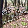 Man-made bridge to cross a portion of trail that is often washed out by heavy rainfall. - Seven Tubs