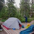 A standard tent platform at Taylor Meadows.- Garibaldi Provincial Park