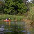 A kayaker explores a secluded cove.- Shawnee State Park
