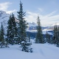 Looking up the valley toward Bow Lake, Mount Jimmy Simpson, and beyond. - Crowfoot Glades Ski Touring