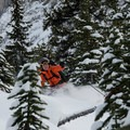 Some sections in the trees can get a bit tight. - Crowfoot Glades Ski Touring
