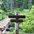 Follow the Blue Lake Trail to continue on to Marion Mountain.- Marion Mountain via Marion Lake