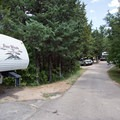 Most campsites have trees. - Bessey Recreation Complex + Campground