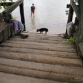 A short set of stairs leads to the river.- Bessey Recreation Complex + Campground