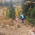 Coming down Wawa Ridge, the terrain gets more fun with some excellent single track.- Healy Pass via Sunshine Meadows