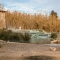 Winter and early spring are good times to visit to avoid large crowds.- Cascate del Mulino in Saturnia
