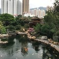 The Blue Pond with Koi fish swimming around and the Pavilion Bridge crossing over. Hong Kong skyscrapers tower over in the background. - Nan Lian Garden