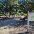 The trailhead is adjacent to the park's Butterfly Garden.- Redwood Grove Trail