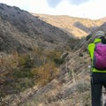 The route is all singletrack. - Bedford Peak
