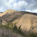 Looking toward the summit.- Bedford Peak
