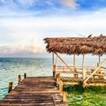 Osprey nest on the roof of a dock at Glovers Reef Atoll. Photo by John Romero.- Belize Barrier Reef System