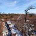 Verkeerder Kill Falls Trail.- Shawangunk Ridge Trail: Sam's Point Section