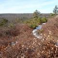 View looking north from Verkeerder Kill Falls Trail.- Shawangunk Ridge Trail: Sam's Point Section