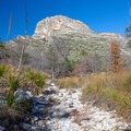 Hiking McKittrick Canyon.- McKittrick Canyon: Lower Section to the Grotto and Pratt Lodge