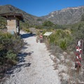 Go straight from the trailhead information sign and pay station.- McKittrick Canyon: Lower Section to the Grotto and Pratt Lodge