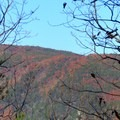 An autumn view of the mountain side.- Big Rock Trail