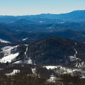 North Carolina side of the range.- Roan Mountain