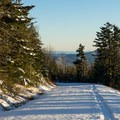 Returning downhill on the road.- Roan Mountain