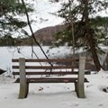 One of many benches. This one is along Round Lake. - Green Lakes Perimeter Loops