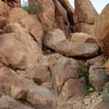 The hardest scramble. Note the trail sign near the top. - Balanced Rock via Grapevine Hills Trail