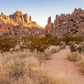 Along the flat portion of the trail.- Balanced Rock via Grapevine Hills Trail