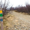 While several trails overlap at first, soon the green and yellow trails split and head across the street.- Söguhringur Trail (Follow The Old Footsteps Trail)