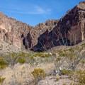 Ocotillo bushes flourish along the trail. - Lower Burro Pour-Off Trail