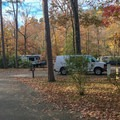 Gulpha is a tightly packed campground with limited privacy. - Gulpha Gorge Campground
