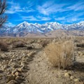 The trail offers wide views of the Sierra Nevada.- Eastern California Museum Trail