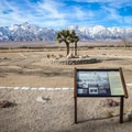 The administration blocks where those who lived and worked at Manzanar resided.- Manzanar National Historic Site